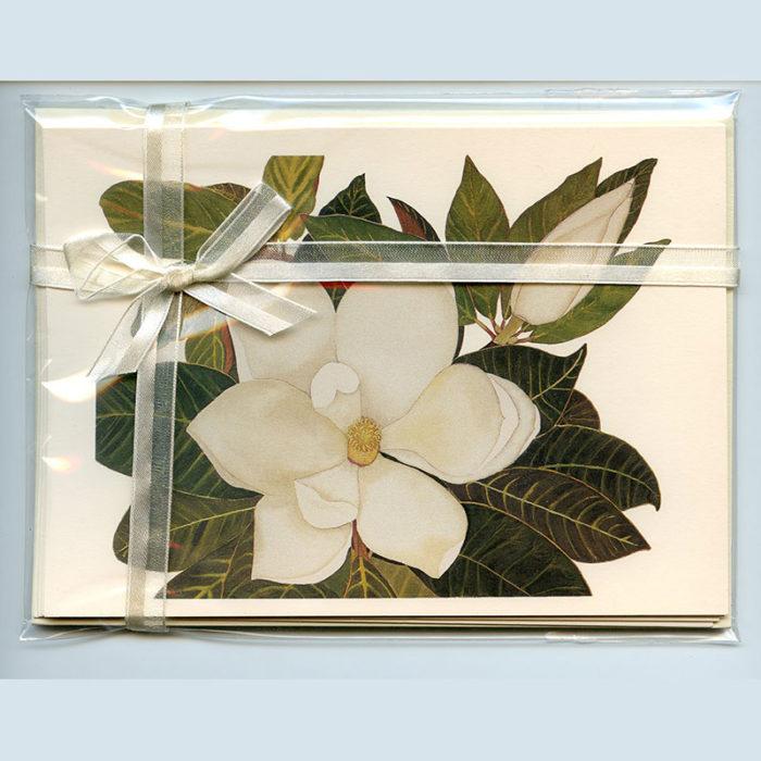 Magnolia-Gift-Pack-Cream-All-season-ribbon