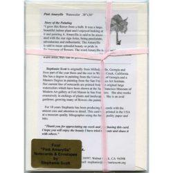 Pink-Amaryllis-Gift-Pack--Back