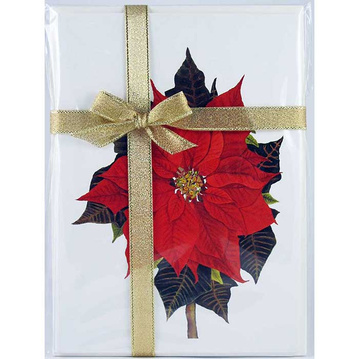 Poinsettia – Floral Notecard 4 Card Gift Pack