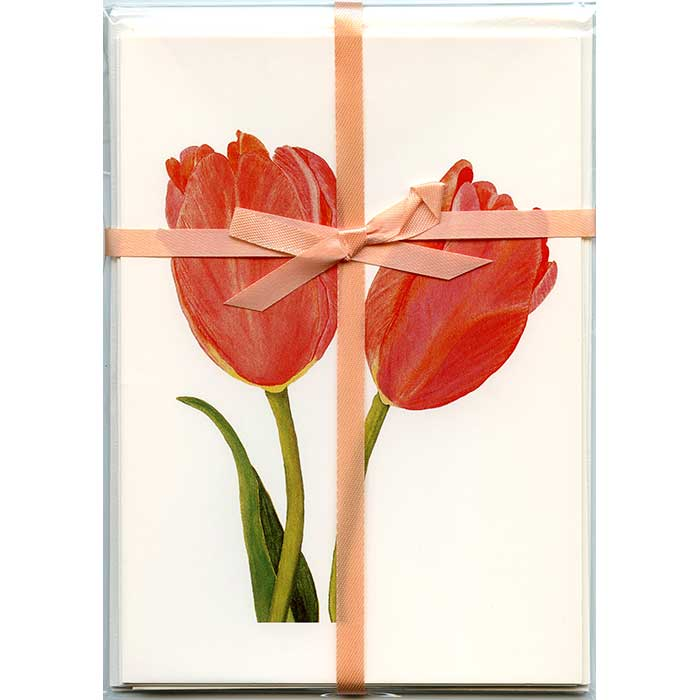 Tulips-Gift-Pack-