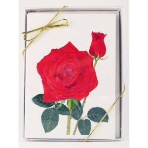 flower notecard figt box