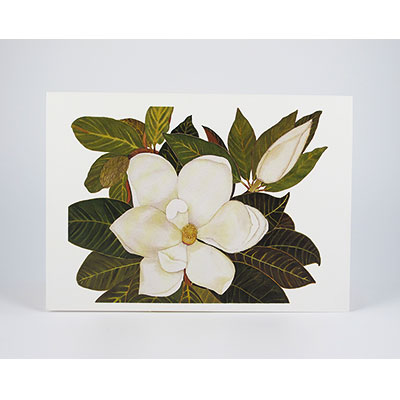 "Floral Enclosure, ""Mini"" Cards"