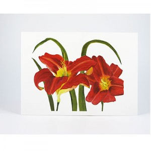 Red-Daylilies-White-NC-SC