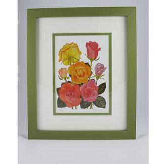 Framed Prints - Botanical