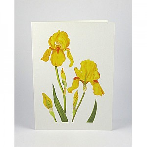 Flower Notecards