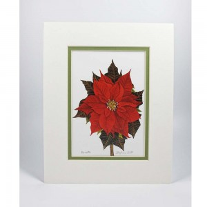 Poinsettia Matted Print - Hand Signed and Titled