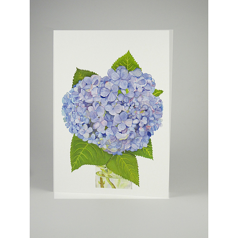Hydrangea floral enclosure quot mini card and matching