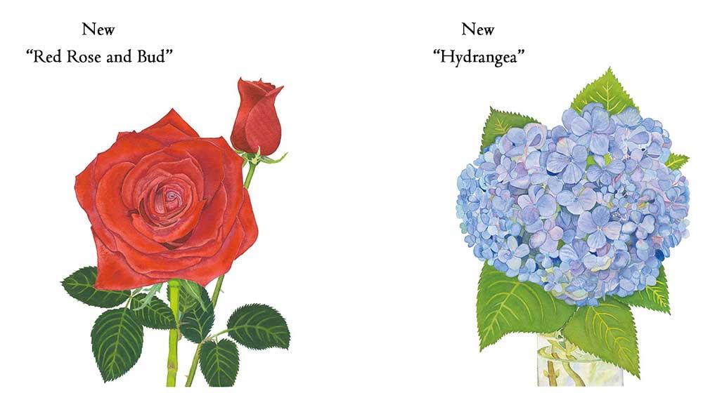 Hydrangea-Red-Rose-Bud-Slider