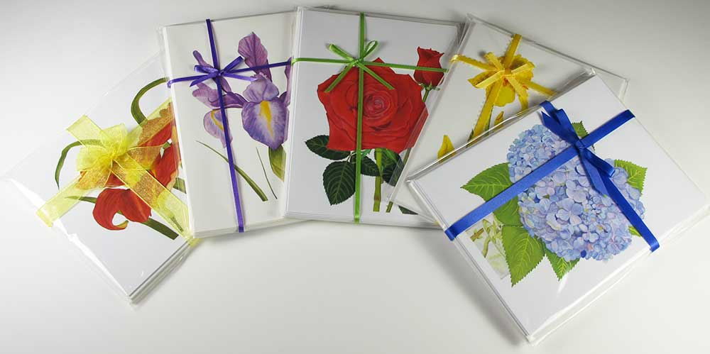 Colorful Fantasy Ribbon Hand-tied Gift Packs