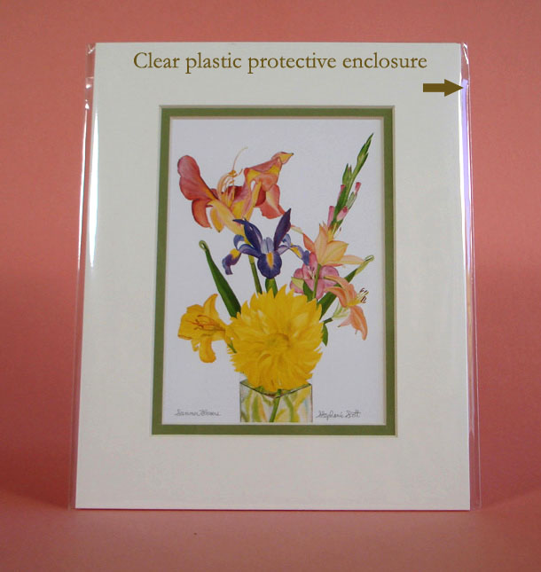 Matted Print Clear Plastic Protective Sleeve