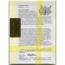 Cymbidium-Orchid-Gift-Pack-Cream-Back