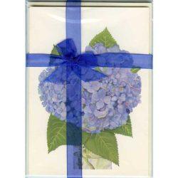 Hydrangea-Gift-Pack---Cream 1