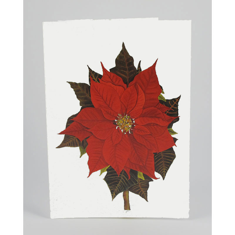 <H2>Holiday Cards - Quantity Discount