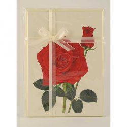 Red-Rose-Bud-Gift-Pack-Cream1