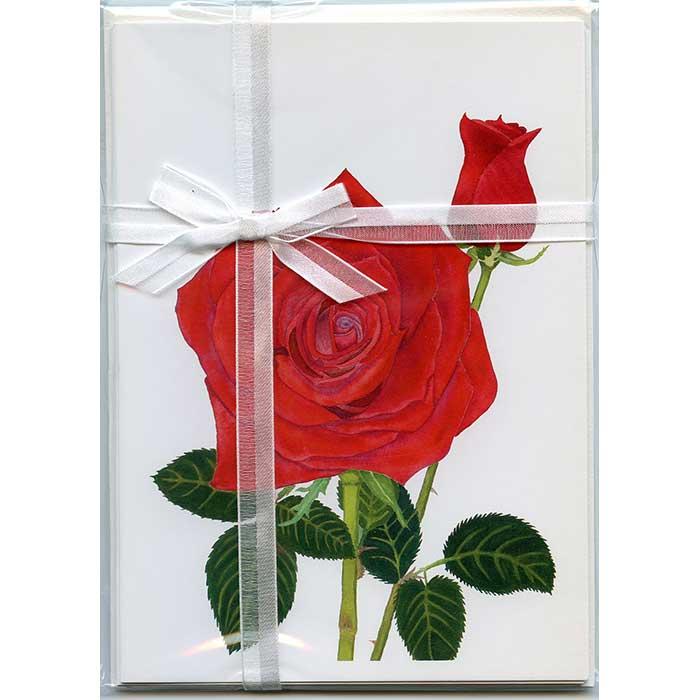 Red-Rose-&-Bud-Gift-Pack---White