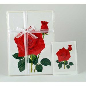 Red Rose-&-Bud-Gift Pack -Enclosure-Card